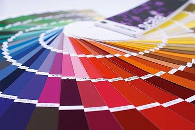 Farbmuster Wandfarbe